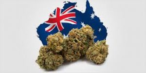 How to Obtain CBD & Medical Marijuana in Australia
