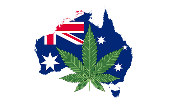 How to Obtain CBD in Australia