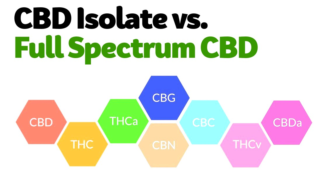 cbd-isolate-vs-cbd-full-spectrum.png
