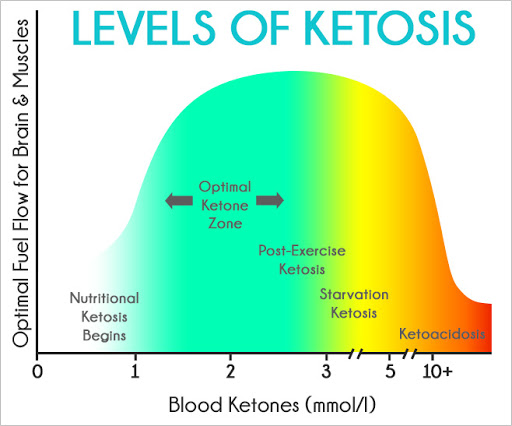 Ketosis in snake diet