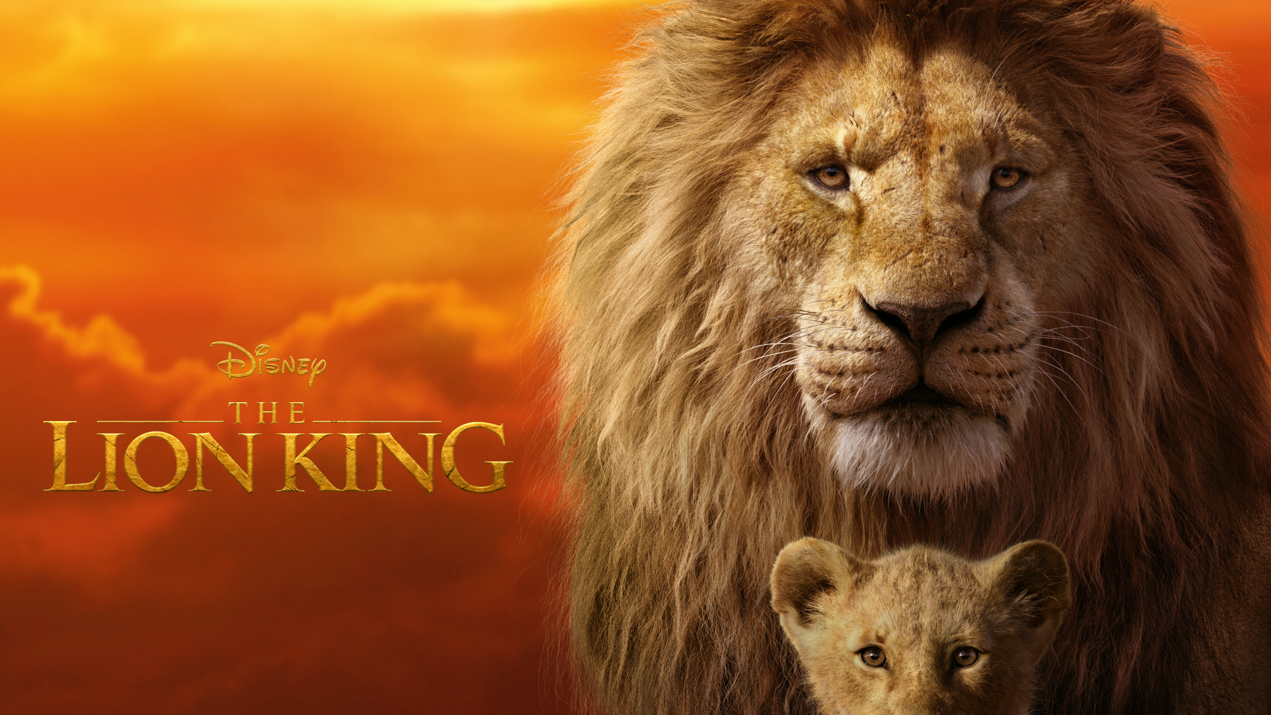 The Lion King (2019 ).