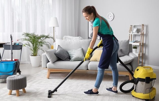 Home Cleaner Option for Carpets