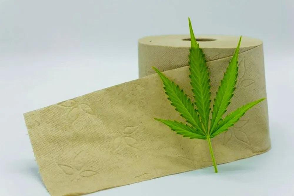 Paper Production by Hemp Fiber