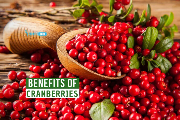 Cranberry Benefits for Mind and Body